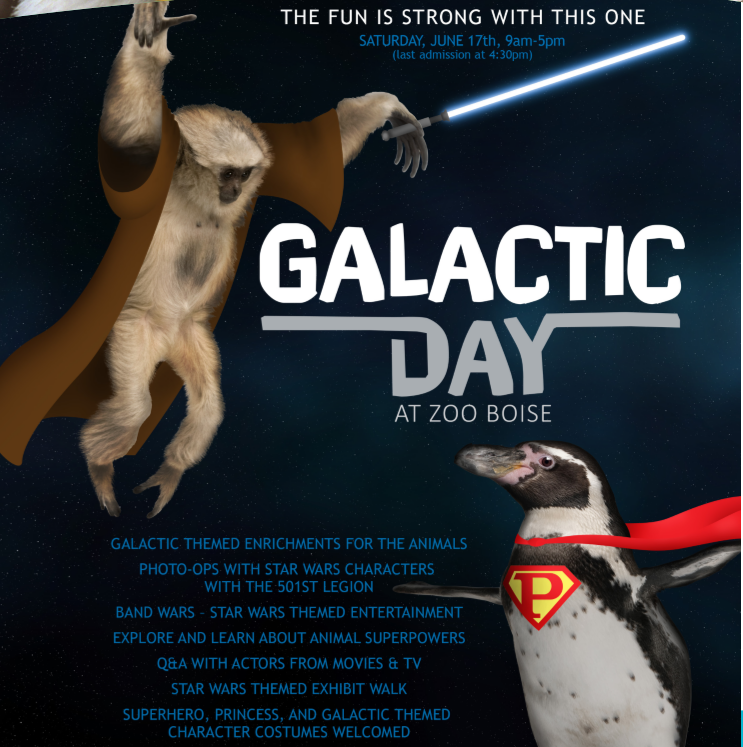 2017_GalacticDay3